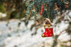 Teddy bear in Christmas sock on snowy branch fir Royalty Free Stock Photos
