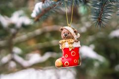 Teddy bear in Christmas sock on snowy branch fir Stock Image