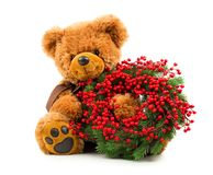 Teddy bear with Christmas wreath. Isolated on white background royalty free stock photo