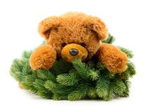 Teddy bear with Christmas wreath. Isolated on white background stock image