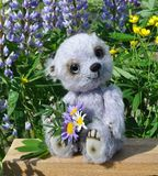 Teddy-bear Chupa. Handmade, the sewed toy: teddy-bear Chupa on a little board among flowers lupine and buttercups Royalty Free Stock Images