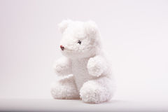 Teddy bear in classic vintage Royalty Free Stock Images