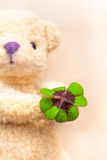 Teddy Bear with Clover Present Stock Photography