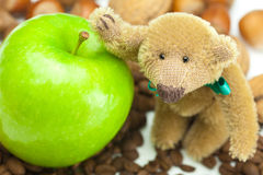 Teddy bear , coffee beans and nuts Royalty Free Stock Image