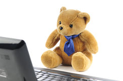 A teddy bear and a computer Royalty Free Stock Photos