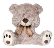 Isolated Teddy Bear covering eyes Royalty Free Stock Image