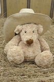 Teddy bear with cowboy ha Stock Images