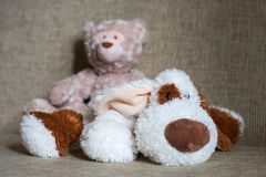 Teddy bear and cubes with number Royalty Free Stock Photography