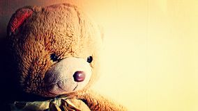 Teddy bear. Cute brown teddy bear with room for text Stock Photos