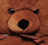 Teddy bear detail Stock Photos
