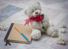 Teddy bear and diary Stock Images