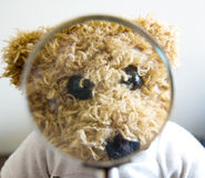 Teddy bear for different concepts Stock Photography