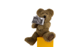 Teddy Bear With Digital Camera Royalty Free Stock Photo