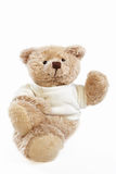 Teddy bear doll Royalty Free Stock Photo