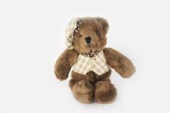 Teddy bear doll Stock Photography