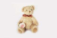 Teddy bear doll Royalty Free Stock Photography