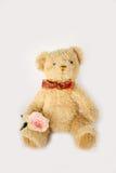Teddy bear doll Stock Images