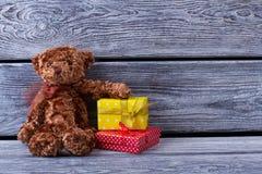 Teddy Bear e caixas de presente Imagens de Stock