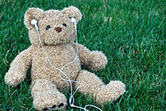 Teddy bear with ear buds Stock Photography