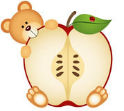 Teddy Bear Eating Apple Sliced Fotografie Stock Libere da Diritti