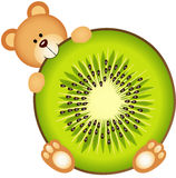 Teddy Bear Eating Kiwi Slice Photos libres de droits