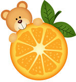 Teddy bear eating orange slice Royalty Free Stock Image