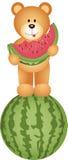 Teddy Bear Eating Watermelon Imágenes de archivo libres de regalías