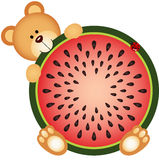 Teddy Bear Eating Watermelon Sliced Fotografering för Bildbyråer