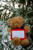 Teddy Bear with Empty Frame on Christmas Tree Stock Image