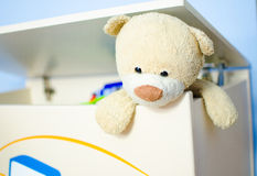 Teddy bear escape. Teddy bear escaping from toy box Royalty Free Stock Image