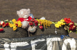 Teddy bear on Euromaidan Royalty Free Stock Images