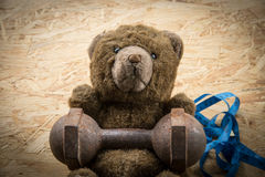 Teddy bear exercise with dumbbell and tape Royalty Free Stock Photos