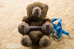 Teddy bear exercise with dumbbell and tape Stock Photo
