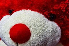 Teddy Bear Face Fotografia de Stock