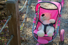 Teddy bear fastened in the baby carriage Royalty Free Stock Photography