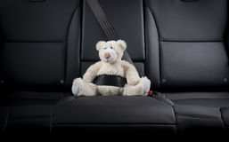 Teddy bear fastened in the back seat of a car Royalty Free Stock Photos