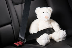 Teddy bear fastened in the back seat of a car Stock Photos