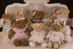 Teddy bear female. Family photo of teddy bear females Stock Photo