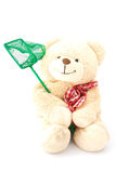 Teddy bear with fishing net Stock Image