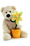 Teddy bear and flower Stock Photos