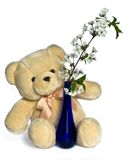 Teddy bear with flowers Stock Photos