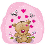 Teddy Bear with flowers Royalty Free Stock Photos