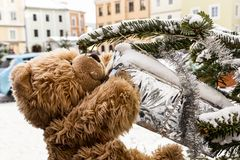 Teddy bear in Freistadt royalty free stock photography