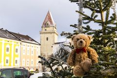 Teddy bear in Freistadt royalty free stock image