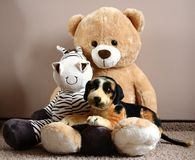 Teddy bear with friends Royalty Free Stock Image