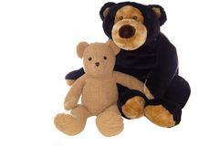 Teddy bear friends, sitting Royalty Free Stock Image
