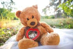 Teddy bear in garden, outdoor Royalty Free Stock Photos
