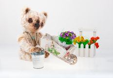 Teddy bear gardener Royalty Free Stock Images