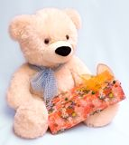 Teddy-bear and gift Stock Image