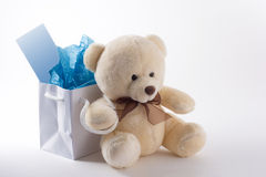 Teddy Bear Gift Bag Stock Image